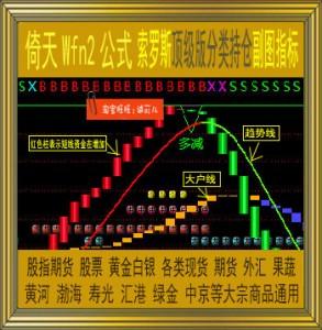 倚天财经/索罗斯顶级版分类持仓指标/wfn2公式/黄金白银/现货期货